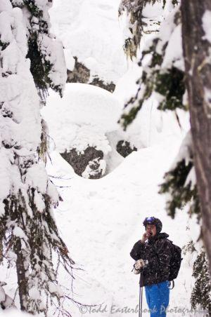 ski-whistler-tree-photo.jpg
